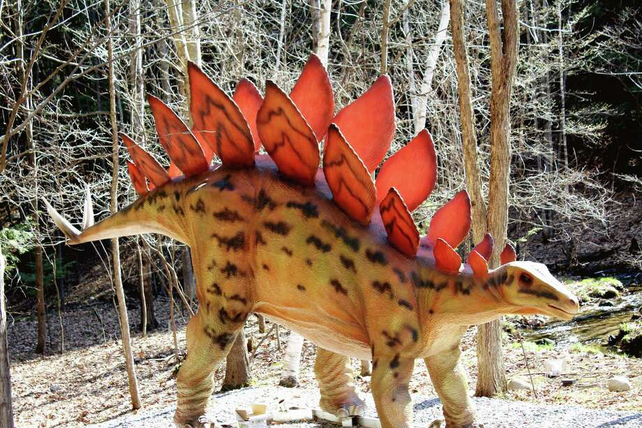 A Stegosaurus along the trail of Dino Roar Valley. (Provided, photo by Gianluca Puorto) Photo: Provided