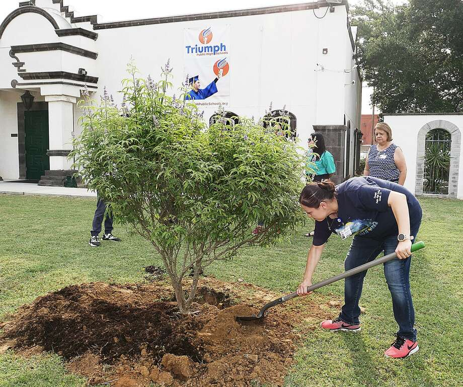 Triumph Public High Schools-Laredo North Science Teacher/Science Club Sponsor Shannon Aguilar participated in a ceremony where a Texas Lilac Tree was donated and planted on the school grounds Wednesday after taking first-place honors recently at the Rio Grande International Study Center's (RGISC) Earth Day Fest Parade. Photo: Cuate Santos / Laredo Morning Times / Laredo Morning Times