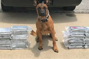 """Officials with the Fort Bend County Narcotics Task Force and a K-9 partner named """"Spyke"""" located the cocaine in an aftermarket-fabricated compartment of the vehicle that was stopped."""