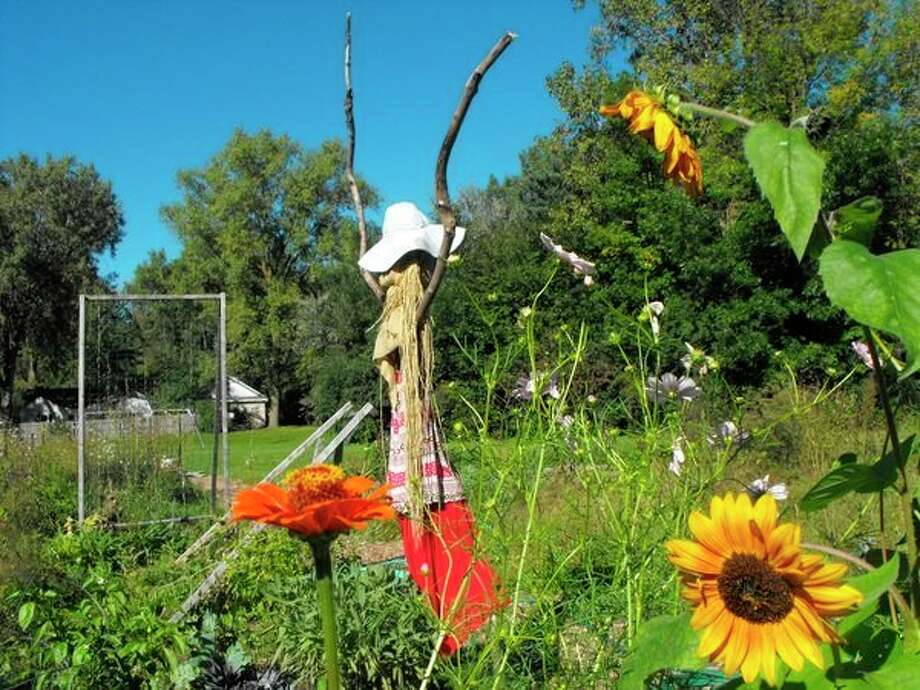 Creative 360 still has a number of garden plots available for the summer. (Photo provided)