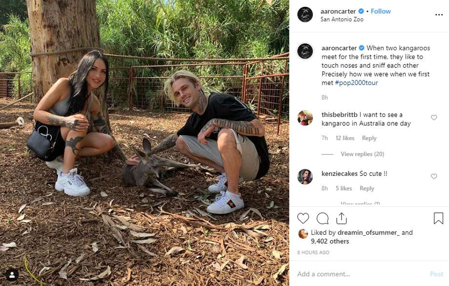 aaroncarter: When two kangaroos meet for the first time, they like to touch noses and sniff each other 