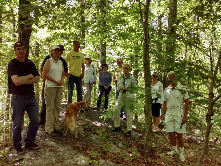 The Litchfield Land Trust will host a hike on June 1 in celebration of Connecticut Trails Day. Photo: Contributed Photo