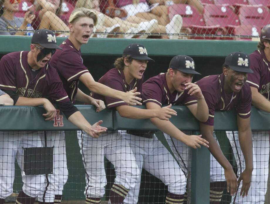Magnolia West players cheer in the second inning during Game 1 of a Region III-5A semifinal high school baseball series at Darryl & Lori Schroeder Park, Wednesday, May 22, 2019, in Houston. Photo: Jason Fochtman, Houston Chronicle / Staff Photographer / © 2019 Houston Chronicle