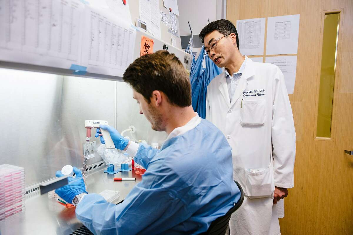 Dr. Joseph Wu, right, confers with masters student Nate Cunningham as he works in a lab at Stanford University in Stanford, Calif, on Friday, May 24, 2019. A new study, authored by Dr. Joseph Wu, Director of the Stanford Cardiovascular Institute, to be published in the Journal of the American College of Cardiology, finds that the flavoring liquid used in e-cigarettes may cause cardiovascular damage.