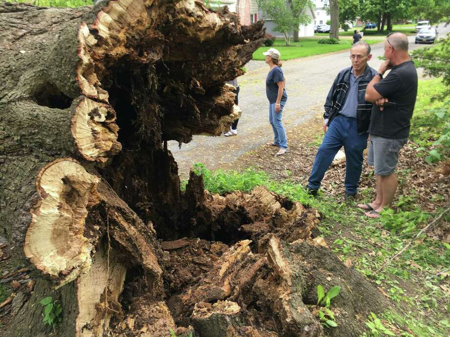 Jack Kenyon, center, talks with a neighbor while looking at the rotted out stump of an oak tree that fell on his property on Hillcrest Road in Latham on Saturday, May 25, 2019. Kenyon and his neighbors said the tree dates back to the 1800s or earlier and that people used to get married by the tree back when a stream ran by. Photo: By Larry Rulison