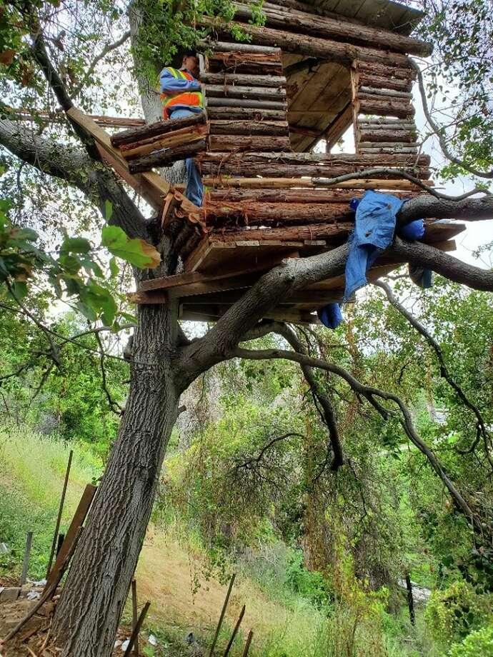 "Pomona police say they found burglary suspectMark Duda, 56, in this ""modern"" treehouse. Photo: Pomona Police Department"