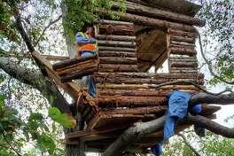 "Pomona police say they found burglary suspectMark Duda, 56, in this ""modern"" treehouse."