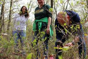 People on the hunt for rare pink lady's slipper flowers during the Lady's Slipper Festival, held by the Huron County Nature Center. The festival also had music performances and craft tables.