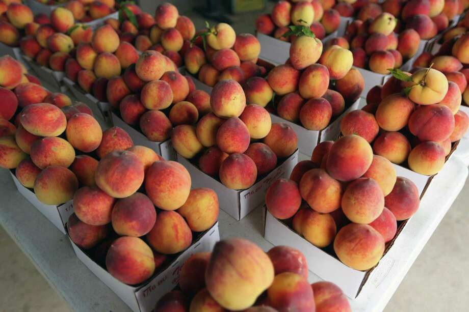 San Antonians will not have to travel to the Hill Country to take advantage of peach season because a taste of Fredericksburg is coming to town for two fruity festivals. Photo: William Luther, Staff / Staff Photographer / ©2019 San Antonio Express-News