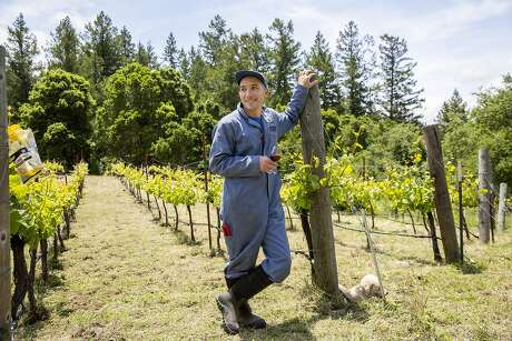 Kenny Likitprakong at the Ahlgren Vineyard in Boulder Creek. The Hobo and Ghostwriter winemaker has farmed the vineyard since the Ahlgren family retired. Photo: Santiago Mejia / The Chronicle