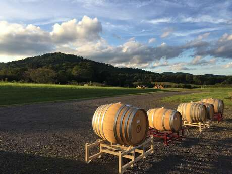 Barrels of wine undergo ambient fermentation at Early Mountain Vineyard in Virginia. Photo: Courtesy Early Mountain Vineyard
