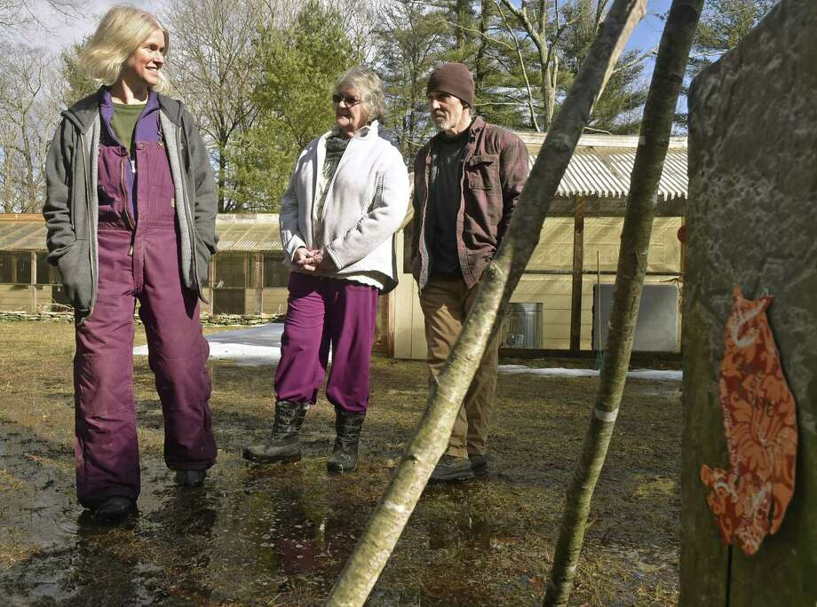 Christine Cummings, left, is president of A Place Called Hope in Killingworth, a nonprofit which rehabilitates birds of prey. At center is Grace Krik, vice president, and, at right, Todd Secki, secretary and treasurer of the organization. During nesting season especially, Cummings and others are trying to raise awareness about the dangers rodenticides pose to birds, which often undergo a slow, painful death following secondary exposure. Photo: Peter Hvizdak / Hearst Connecticut Media / New Haven Register