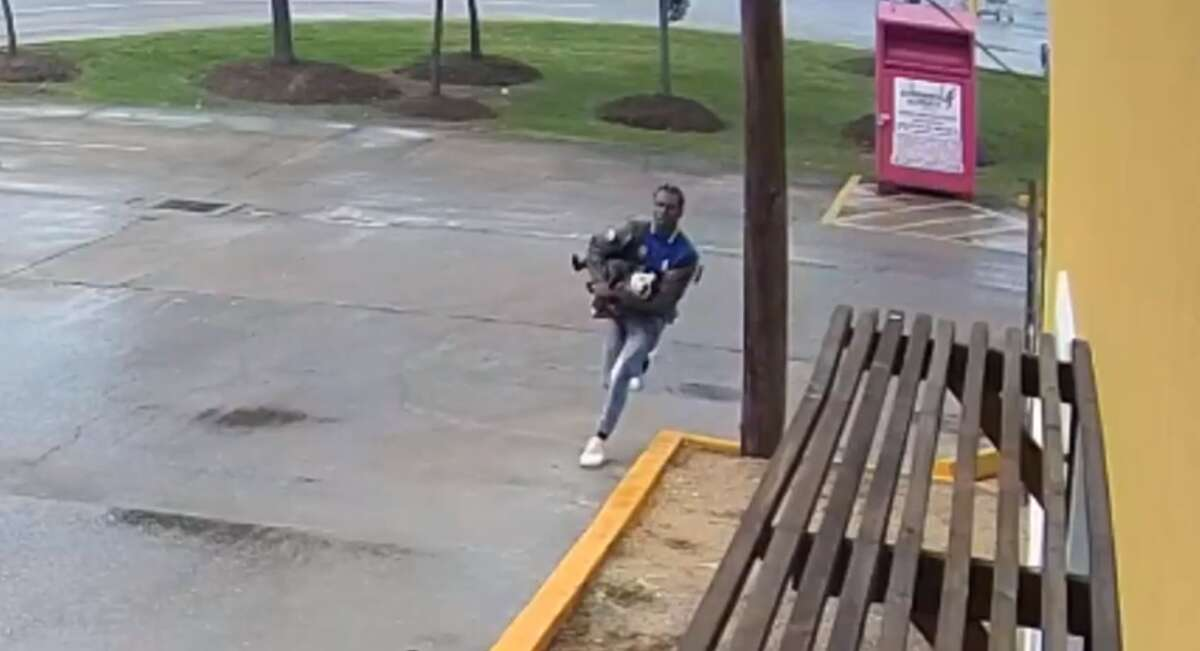Houston police are looking for this man after he allegedly stole a woman's $2,500 English Bulldog on May 3.