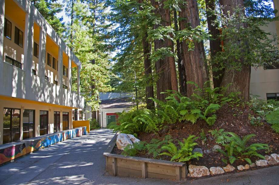 Buildings on the campus of UC Santa Cruz. Photo: Mitch Diamond/Getty Images