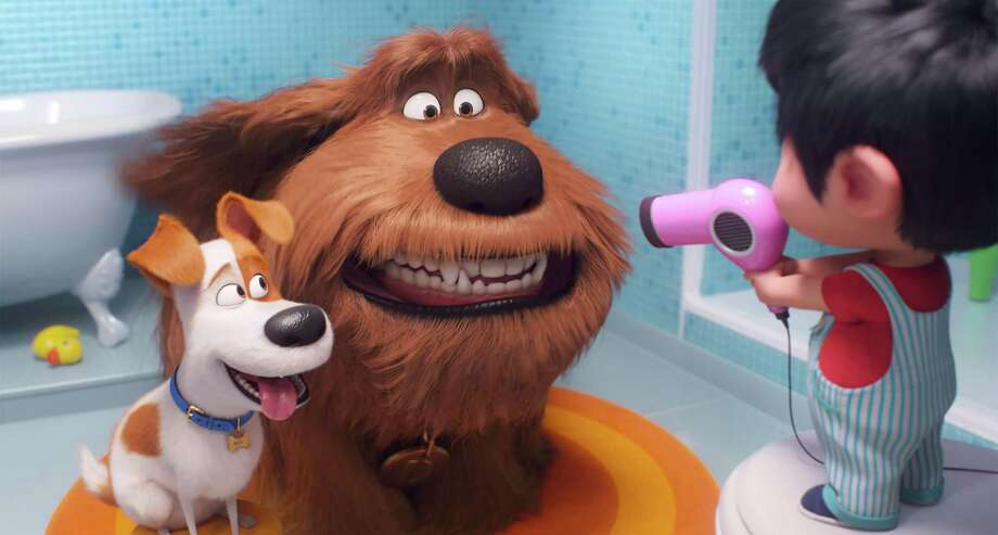 "This image released by Universal Pictures shows Max, voiced by Patton Oswalt, from left, Duke, voiced by Eric Stonestreet and Liam, voiced by Henry Lynch in a scene from ""The Secret Life of Pets 2."" (Illumination Entertainment/Universal Pictures via AP) Photo: Associated Press / © 2019 UNIVERSAL STUDIOS"
