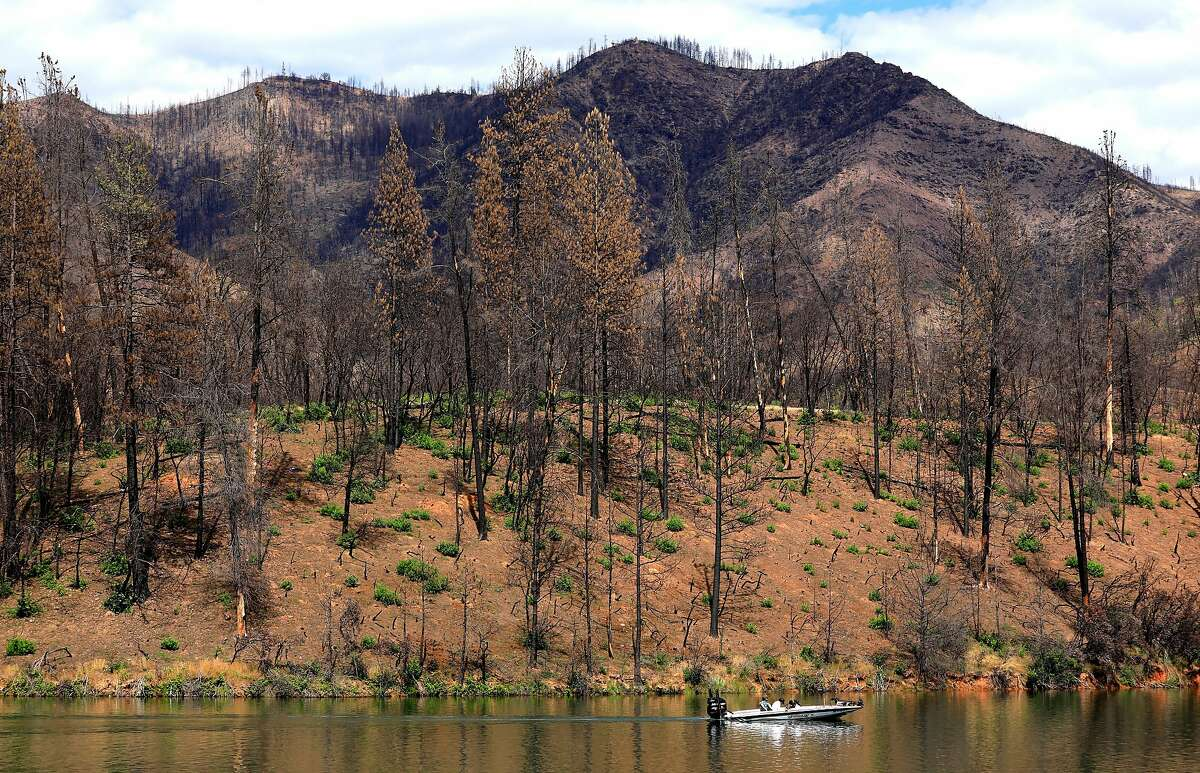 A boat against the scarred landscape surrounding Whiskeytown Lake after last year�s Carr Fire decimated the area, near Whiskeytown, Ca., as seen on Tuesday May 28, 2019.
