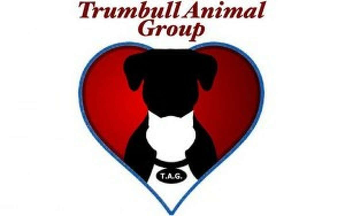 Trumbull Animal Group