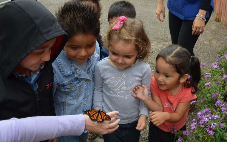 Children in the Mercy Learning Center's day care program release the monarch butterflies that they watched hatch from eggs earlier this year. — Submitted photo