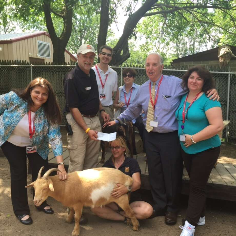 CTS employees gather around a goat the Beardsley Zoo.