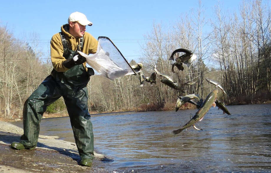 Trumbull officials have reached a solution that will keep trout stocked in local water by the Connecticut Department of Energy and Environmental Protection. — Connecticut DEEP photo