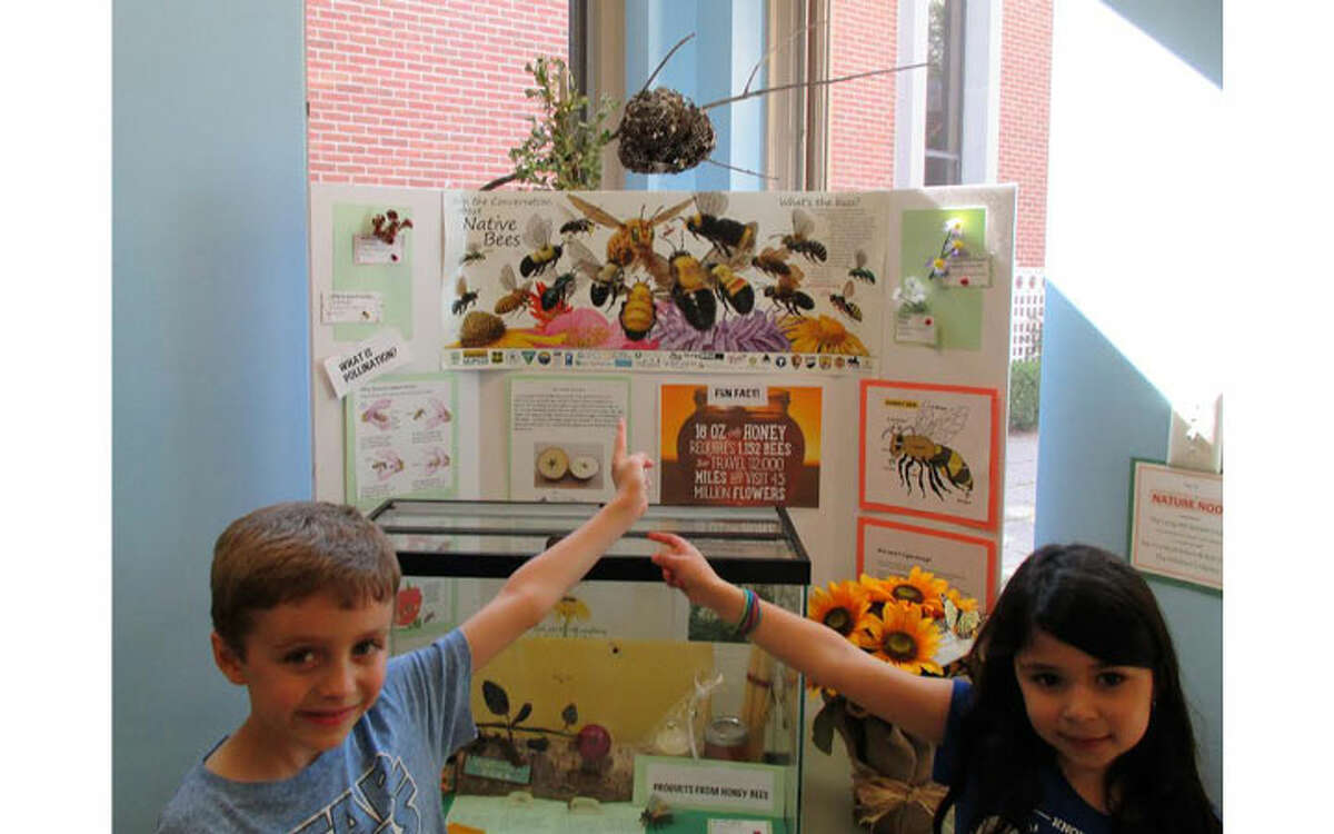 Sam Kellogg and Abby Procaccini point out their favorite part of the display, the wasp nest at the Nature Nook, a project of the Long Hill Garden Club.