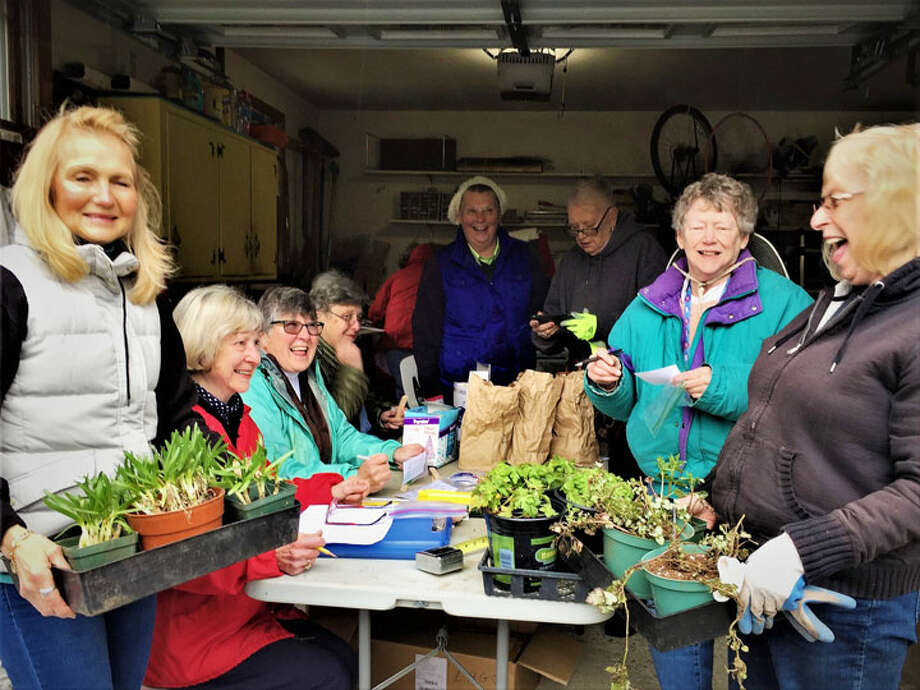 Members of the Long Hill Garden Club prepare for the May 5 th Plant Sale.