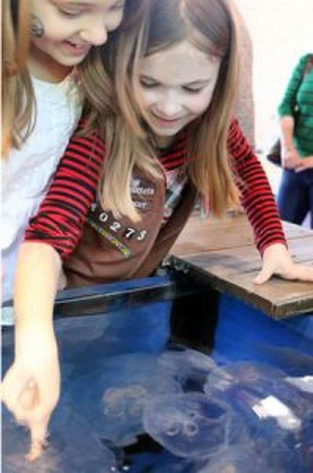 Maritime Aquarium hosts Scout Day March 23.