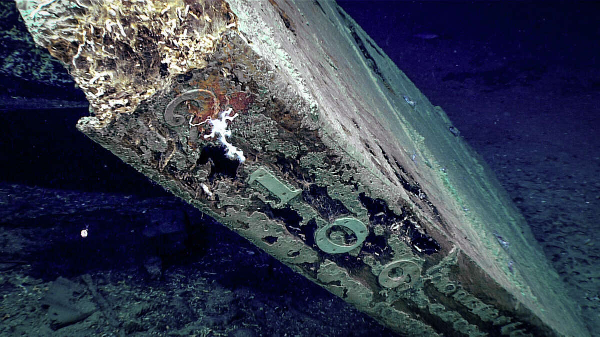"""The numbers """"2109"""" are visible along the trailing edge of the shipwreck's rudder. The pattern of nails securing the copper sheathing is plainly visible. (Source: National Oceanic and Atmospheric Administration)"""
