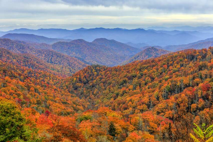 Great Smoky Mountains National Park North Carolina and Tennessee Visitors: 11.4 million per year Where to camp free: Dispersed camping at Harmon Den on the northeast side of the park or anywhere in Pisgah National Forest