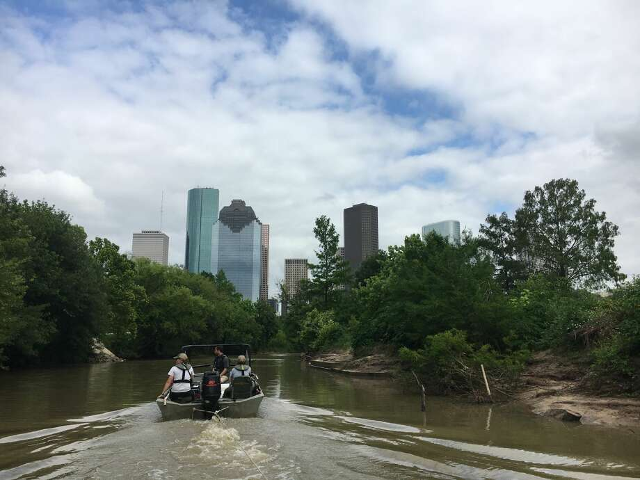>> Click through the following gallery to see what kind of fish and other critters you can catch in Houston's Buffalo Bayou. Photo: Texas Parks And Wildlife Department, Inland Fisheries