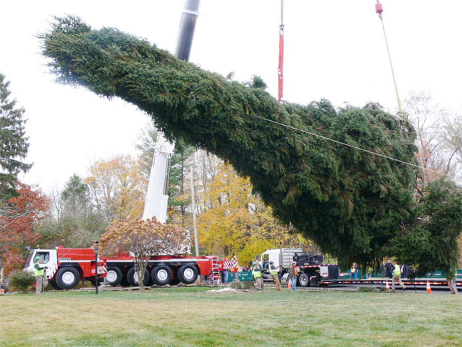 The tree is removed from the Vargoshe's property to be trucked to Rockefeller Center.