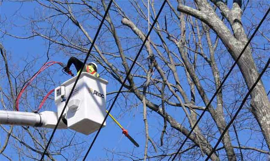 Workers cut back trees on Route 110 between downtown and White Hills for the United Illuminating tree-trimming program, which has been criticized for being too intensive.