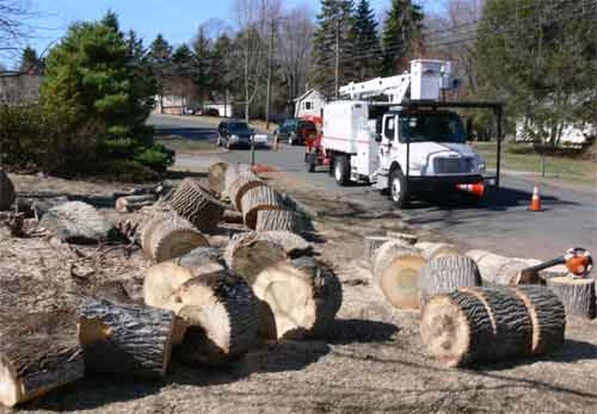 Tree crews for UI cut up a tree for a pleased property owner on a Longfellow Road property, which is in White Hills.