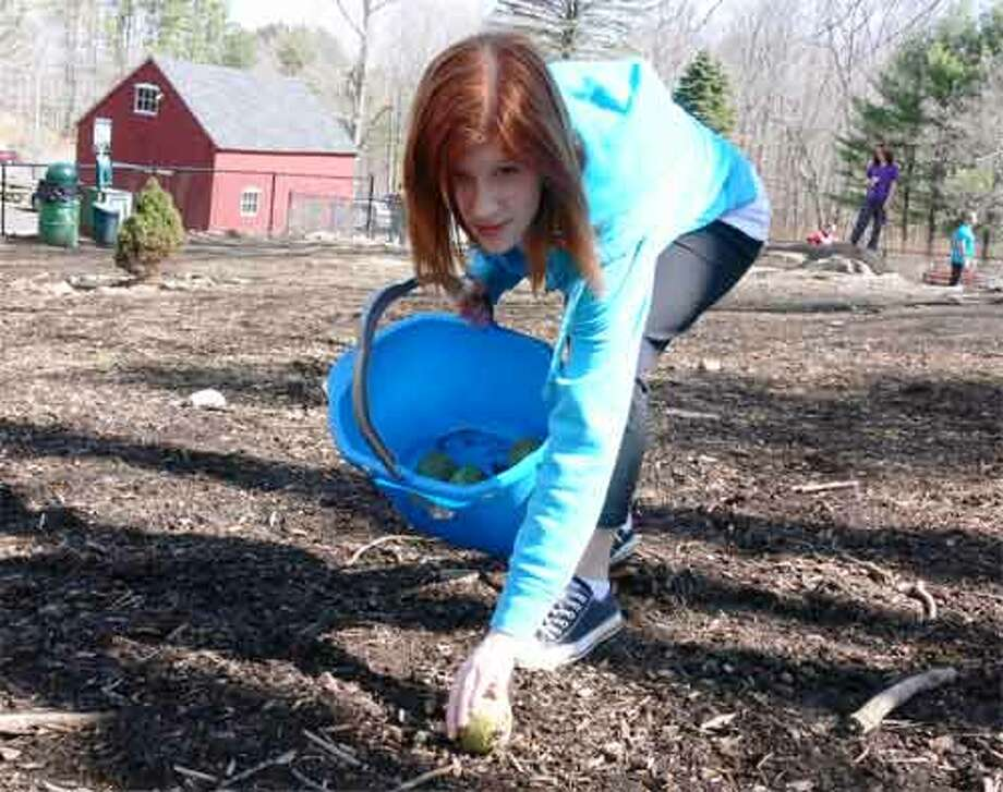 """Erica Kennedy, a Shelton High School sophomore, picks up a tennis ball at the Shelton Dog Park on Saturday as part of a community service project. """"I wanted to see what I could do to help out here,"""" she said. A bucket of tennis balls is available for use by dog owners and their canines."""