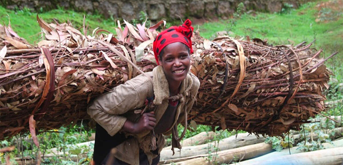 A woman in Ethiopia carries a heavy load of firewood.