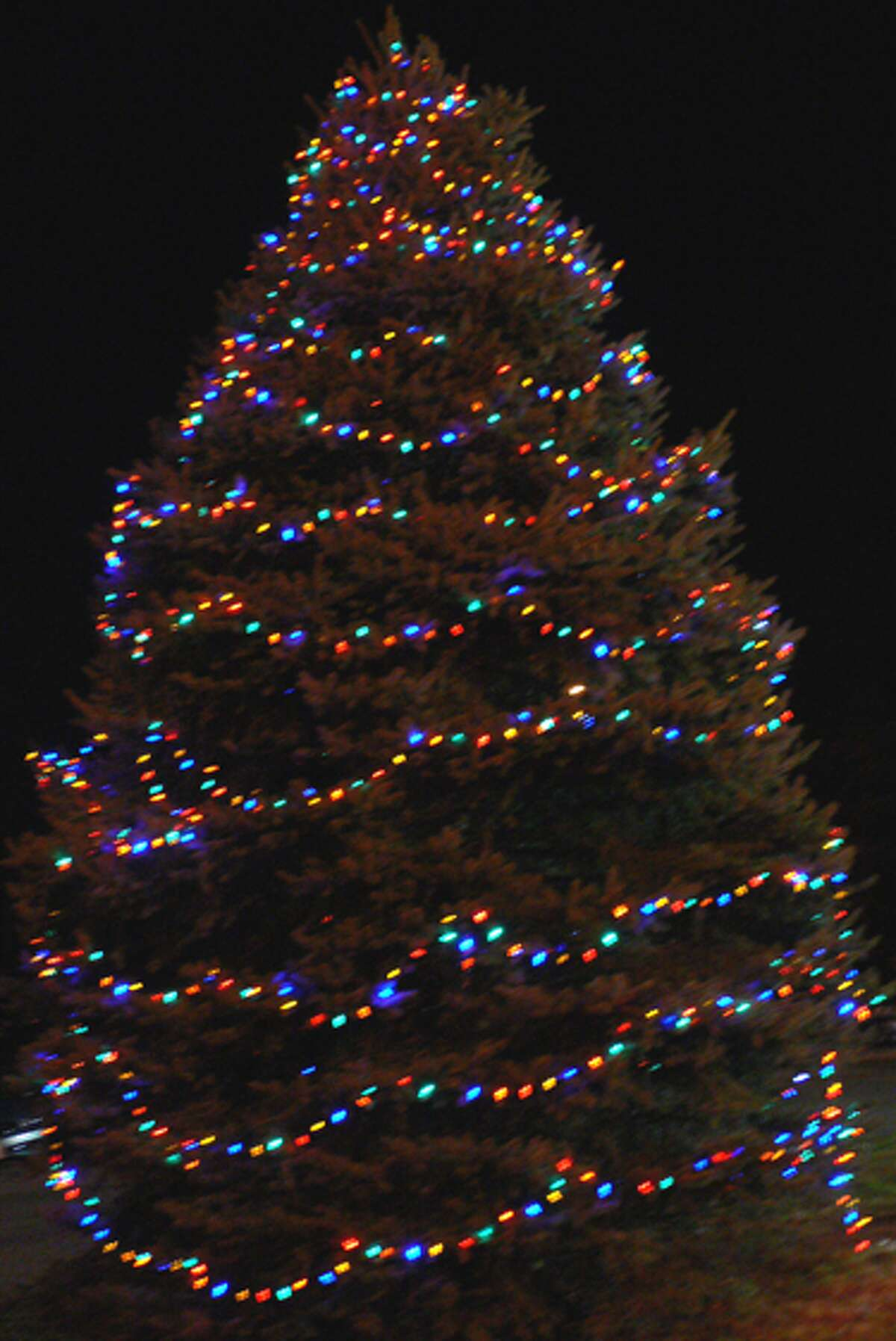 One of the two trees lit for the holiday season at the White Hills firehouse.