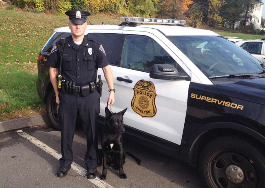 Stryker, the Shelton Police Department's new K-9, with handler and police officer Dan Loris.