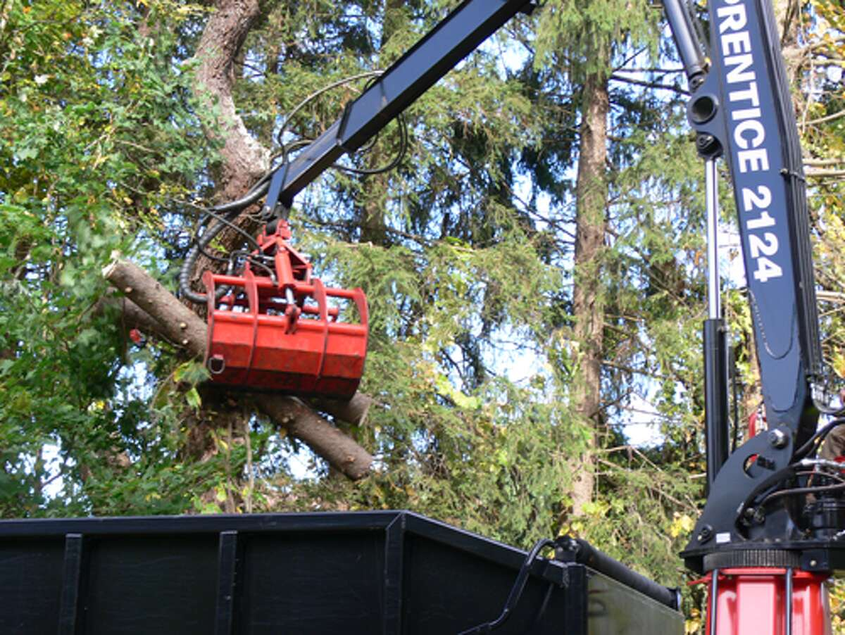 Crews place cut-down tree parts in the back of a truck to be hauled away.