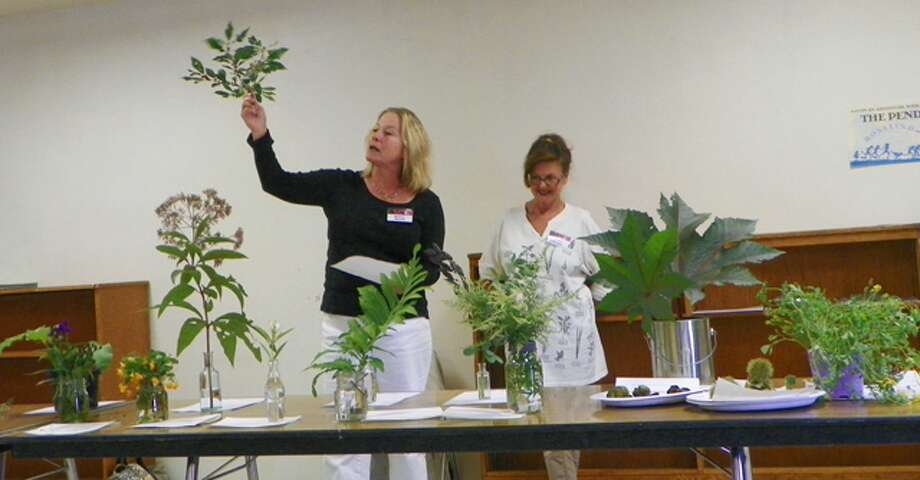 Olde Ripton Garden Club members try to identify plants during last year's Plant Mystery Day.