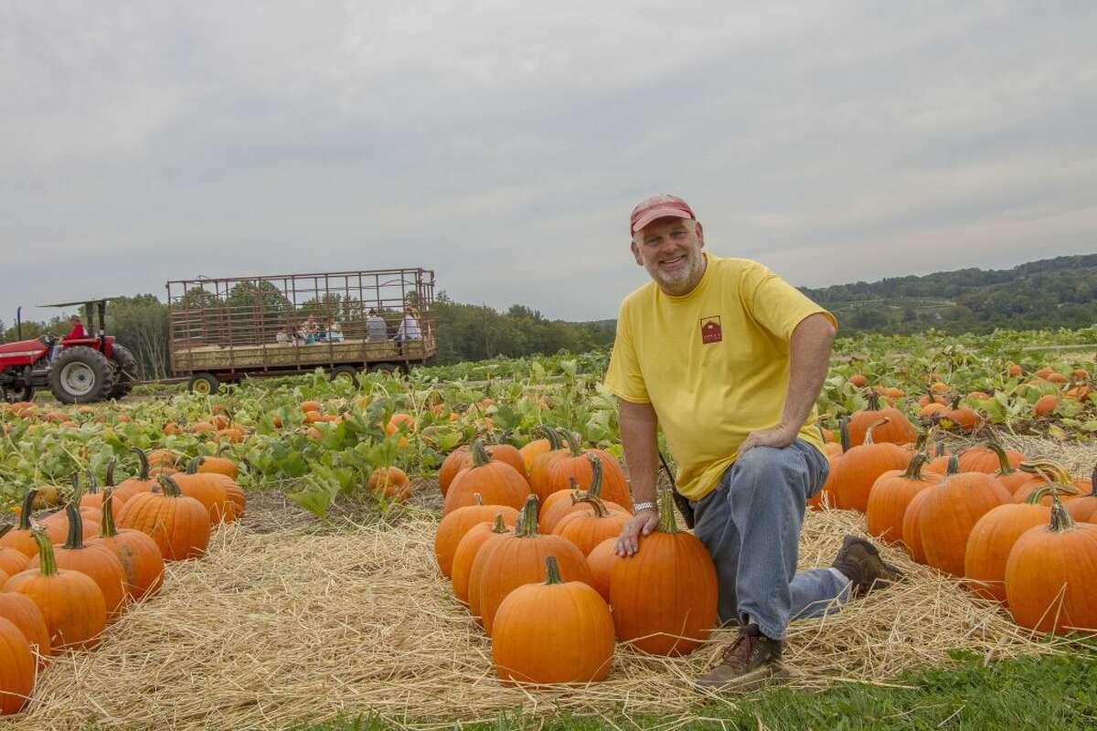 SH-P1 Pumpkins 9-28