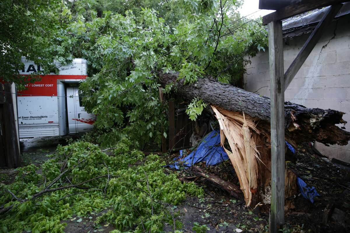 A large pecan tree fell on this rental truck blocking Michigan Ave near W Mulberry on Thursday afternoon.