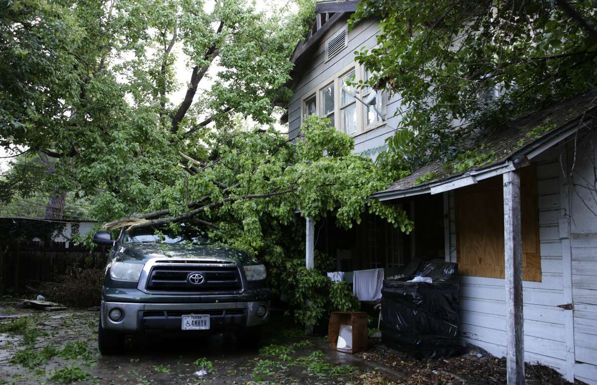 A large pecan tree fell on this truck blocking Michigan Ave near W Mulberry on Thursday afternoon.