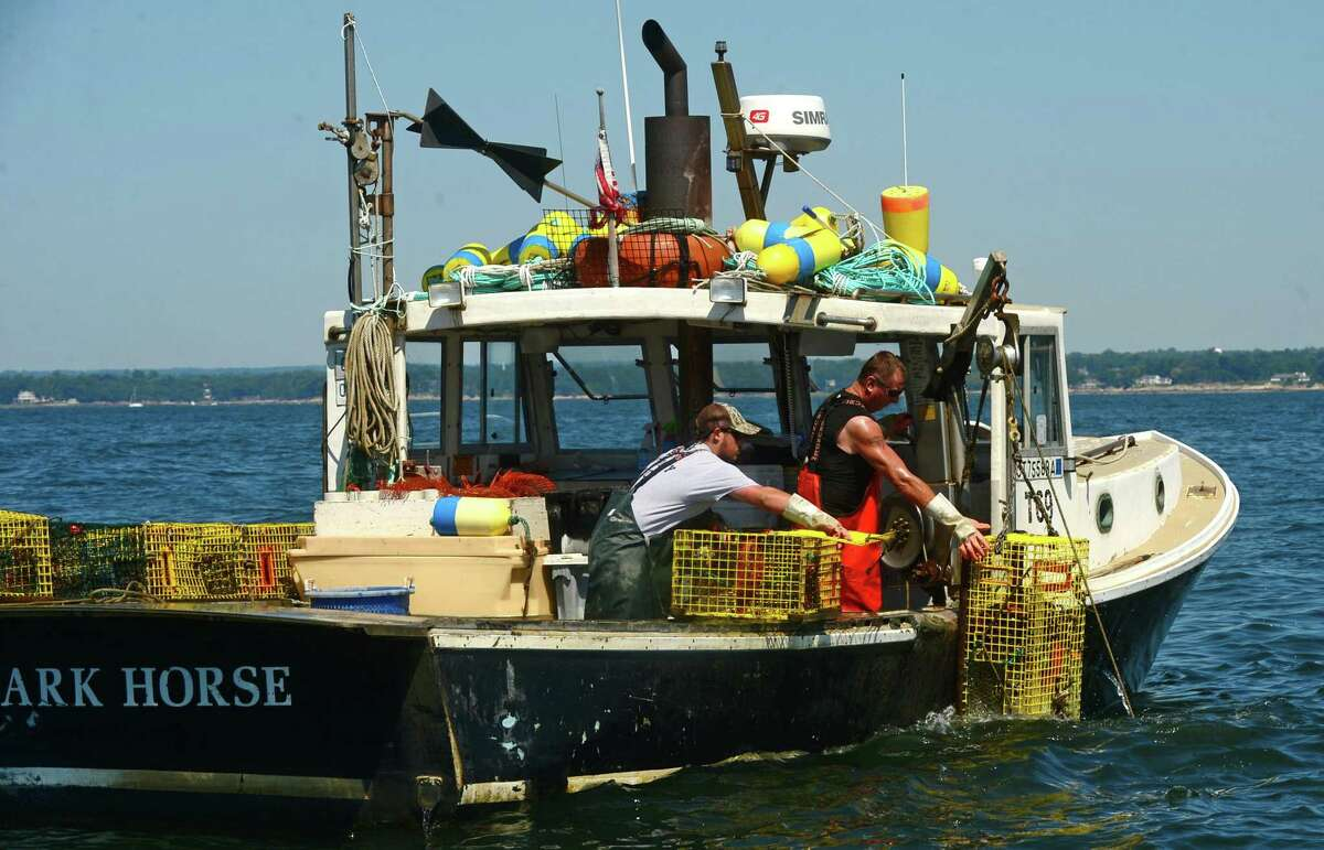 Mike Aitoro, left, fishes with Mike Kalaman on Long Island Sound for The Norm Bloom and Sons Company.