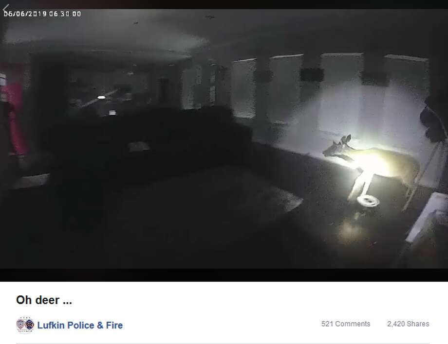 Photo: Facebook/ Lufkin Police & Fire