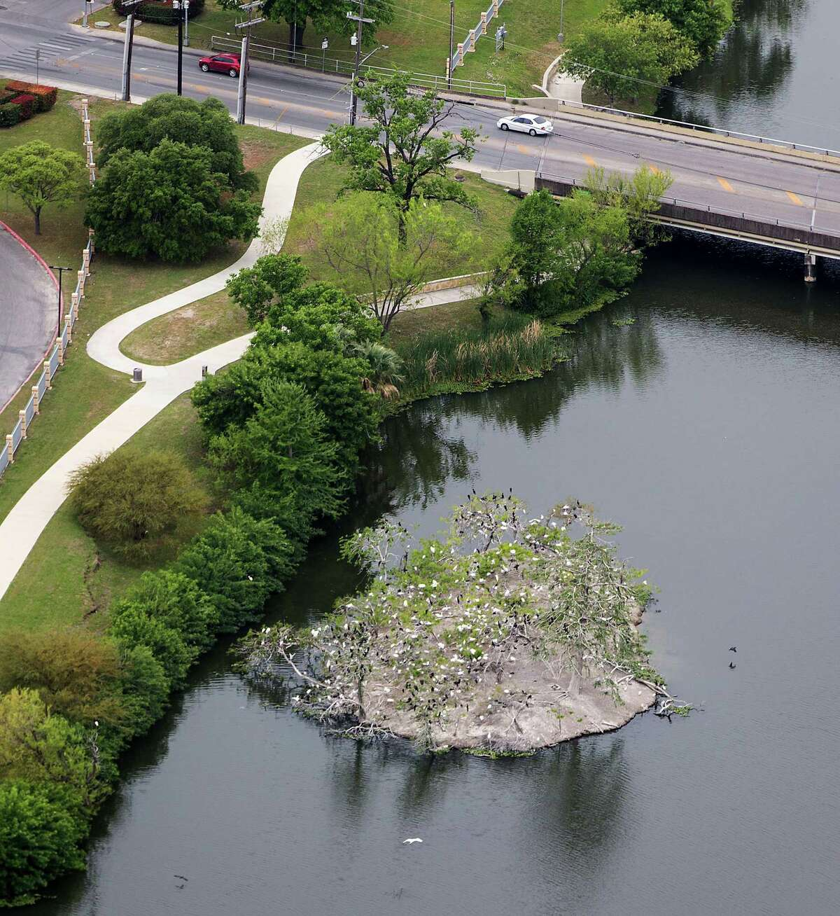 A Cattle Egret rookery on the so-called Bird Island in Elmendorf Lake is seen in a Tuesday, April 3, 2019 aerial photo.