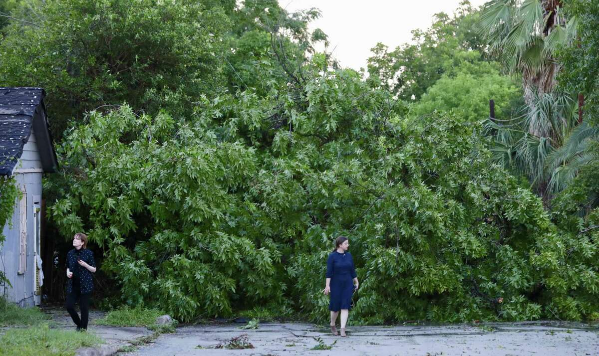 Jackie Johnson, left, and her daughter Olivia Steenberghe inspect a large pecan tree that fell, blocking Michigan Ave near W Mulberry next to Steenberghe's house on Thursday afternoon.