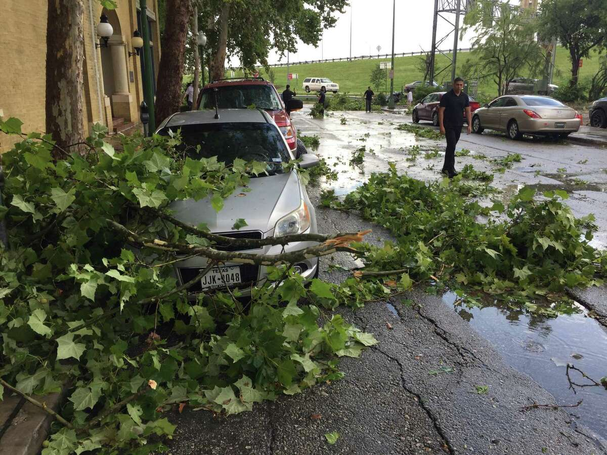Broken branches from trees at Sycamore Ave., East Commerce on Thursday afternoon.