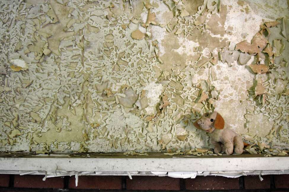 A toy dog sits on the mantle of the caretaker's house for the Homestead Asylum on Thursday, May 23, 2019 in Middle Grove, NY. (Phoebe Sheehan/Times Union)