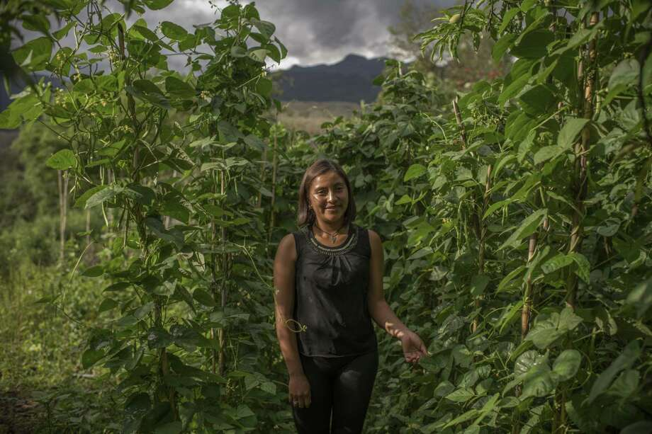 Lesly Cano Gómez on her plot in the village of Chichalum, in the rugged Huehuetenango region of northern Guatemala, May 26. People here say that when President Donald Trump thunders about migrants, he isn't scaring people away, but rather is sparking more discussion about migration. Photo: DANIELE VOLPE /NYT / NYTNS