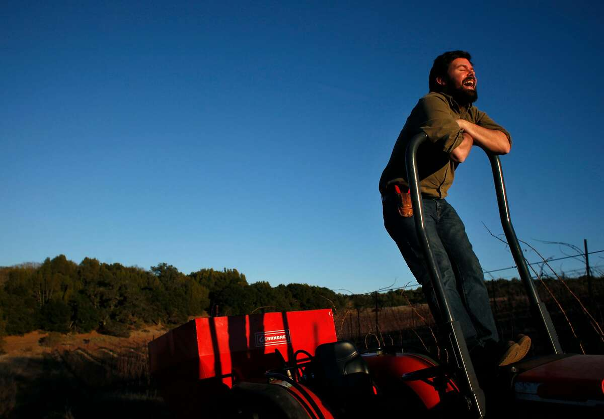 Winemaker John Lockwood, creator of Enfield wines laughs as he climbs up on a vintage tracker in the middle of a unique Chardonnay vineyard on the rolling hills of Heron Lake above Wild Horse Valley, Monday January 20, 2014, in Napa, Calif.